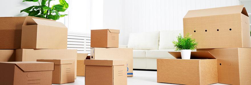 Trouver des cartons de déménagement pas cher